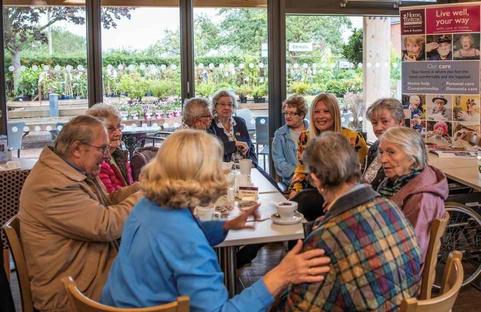 Companionship Cafe successful launch